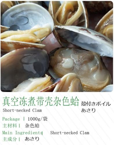 真空冻煮带壳杂色蛤